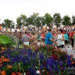 Salsa et fleurs Vieux Saint-jean